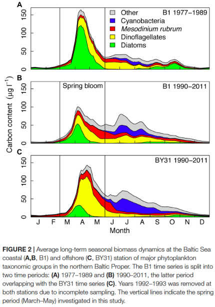 Seasonal biomass dynamics of major phytoplankton groups in the Baltic Sea